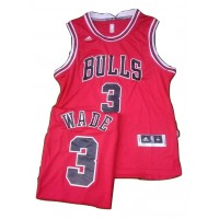 ICONIC BasketBall Jersey - WADE